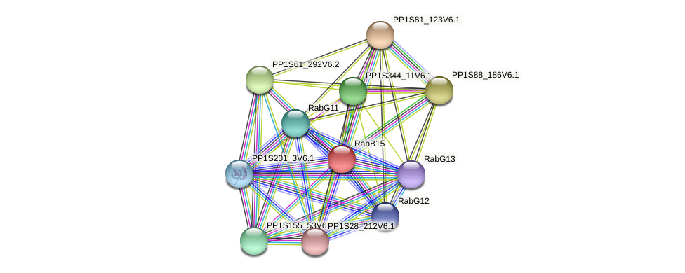 RabB15 protein (Physcomitrella patens) - STRING interaction network