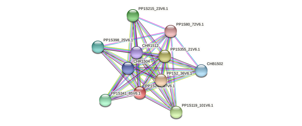PP1S240_87V6.1 protein (Physcomitrella patens) - STRING interaction network