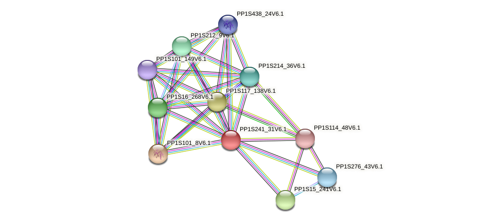 PP1S241_31V6.1 protein (Physcomitrella patens) - STRING interaction network