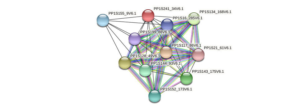 PP1S241_34V6.1 protein (Physcomitrella patens) - STRING interaction network