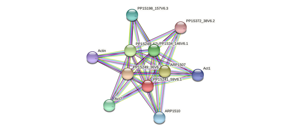 PP1S241_59V6.1 protein (Physcomitrella patens) - STRING interaction network