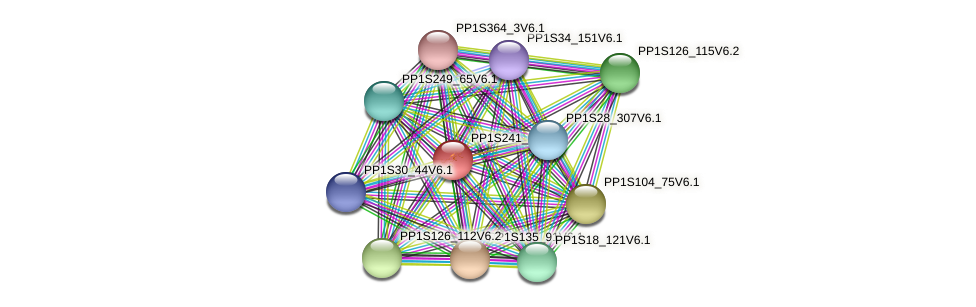 PP1S241_60V6.1 protein (Physcomitrella patens) - STRING interaction network