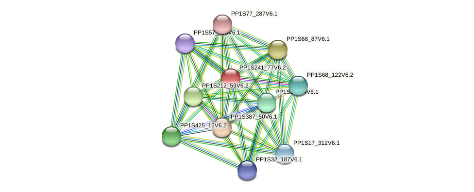 PP1S241_77V6.1 protein (Physcomitrella patens) - STRING interaction network