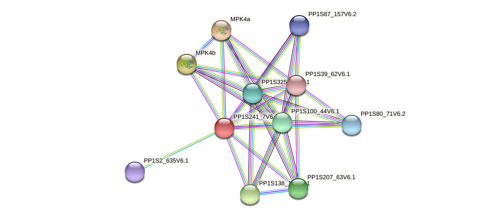 PP1S241_7V6.1 protein (Physcomitrella patens) - STRING interaction network