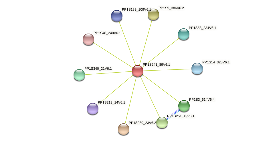 PP1S241_89V6.1 protein (Physcomitrella patens) - STRING interaction network