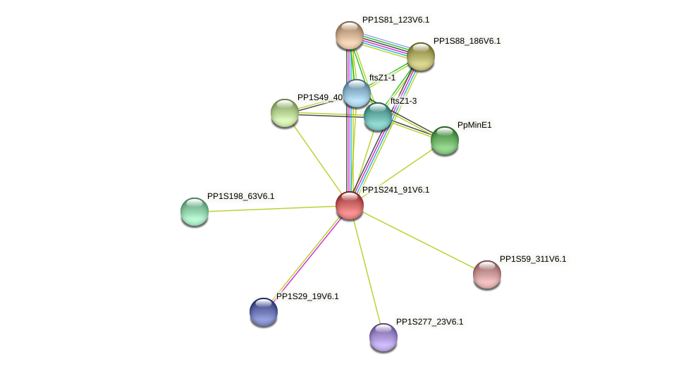 PP1S241_91V6.1 protein (Physcomitrella patens) - STRING interaction network