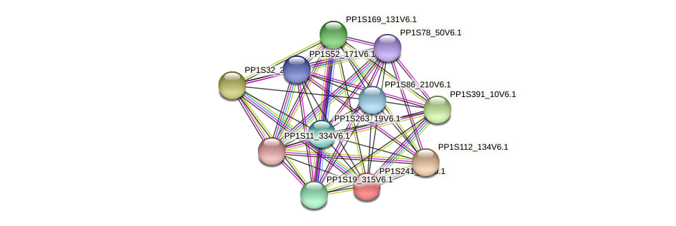PP1S241_95V6.1 protein (Physcomitrella patens) - STRING interaction network