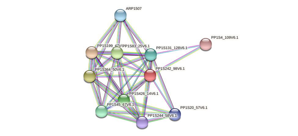 PP1S242_98V6.1 protein (Physcomitrella patens) - STRING interaction network