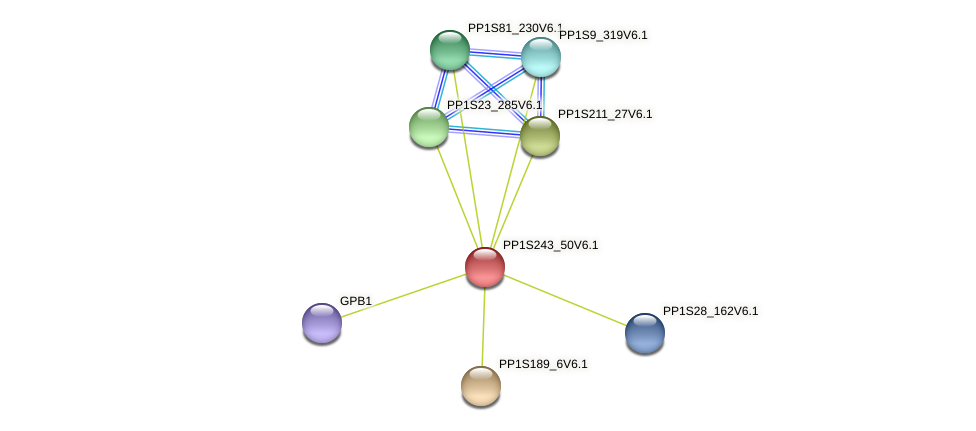 PP1S243_50V6.1 protein (Physcomitrella patens) - STRING interaction network