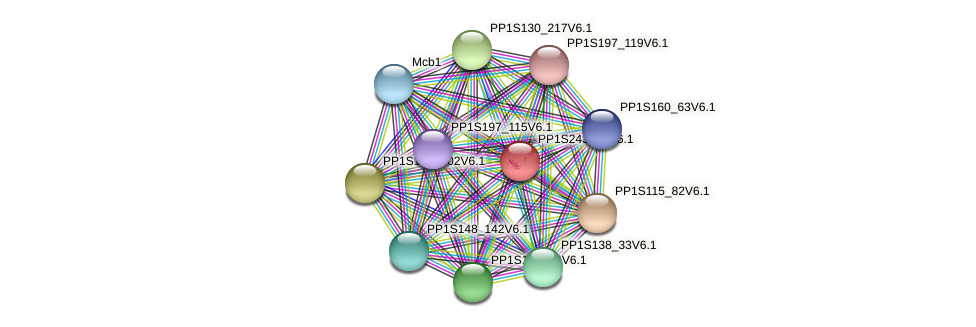 PP1S243_67V6.1 protein (Physcomitrella patens) - STRING interaction network