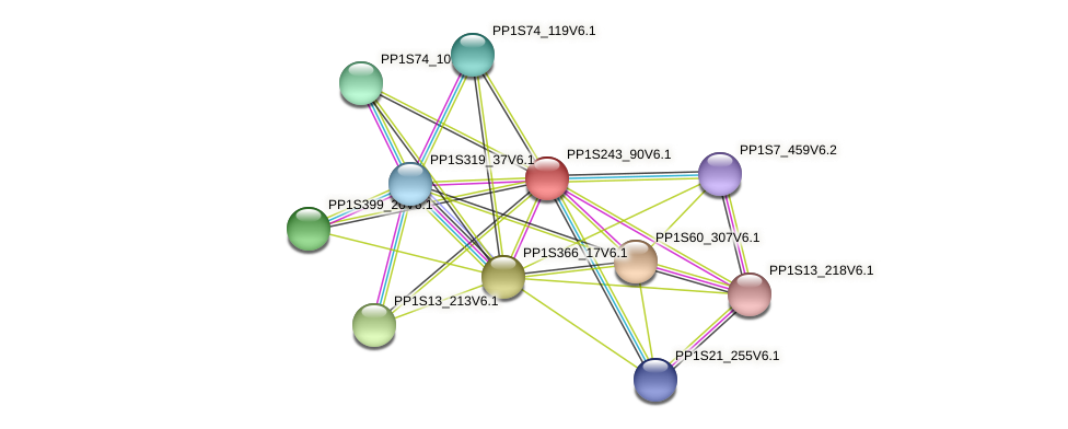 PP1S243_90V6.1 protein (Physcomitrella patens) - STRING interaction network