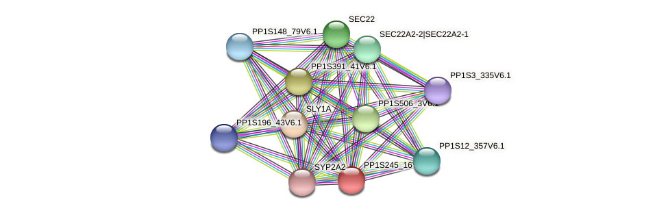 PP1S245_16V6.1 protein (Physcomitrella patens) - STRING interaction network