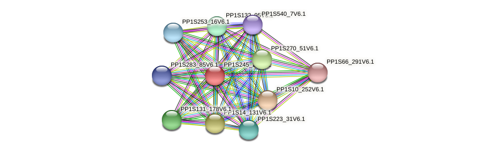 PP1S245_29V6.1 protein (Physcomitrella patens) - STRING interaction network