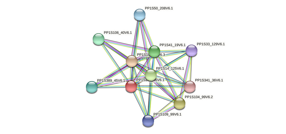 PP1S245_56V6.1 protein (Physcomitrella patens) - STRING interaction network