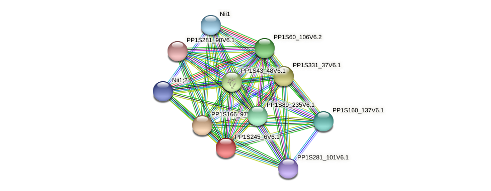 PP1S245_6V6.1 protein (Physcomitrella patens) - STRING interaction network