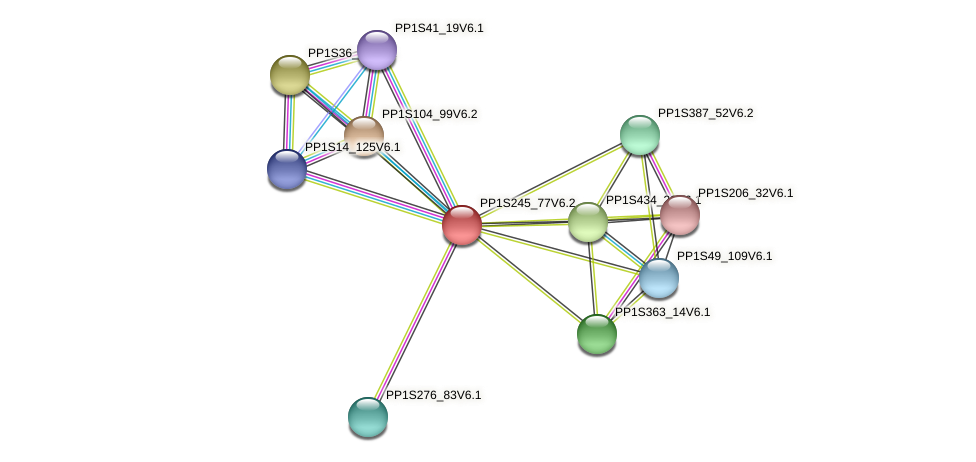 PP1S245_77V6.2 protein (Physcomitrella patens) - STRING interaction network
