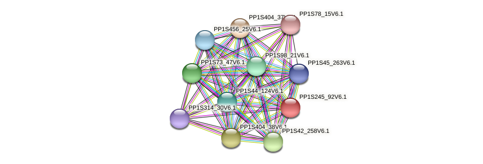 PP1S245_92V6.1 protein (Physcomitrella patens) - STRING interaction network
