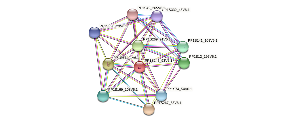 PP1S245_93V6.1 protein (Physcomitrella patens) - STRING interaction network
