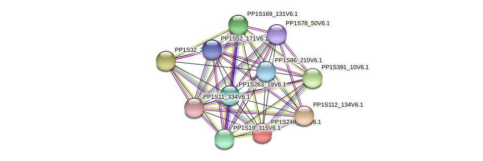 PP1S246_118V6.1 protein (Physcomitrella patens) - STRING interaction network
