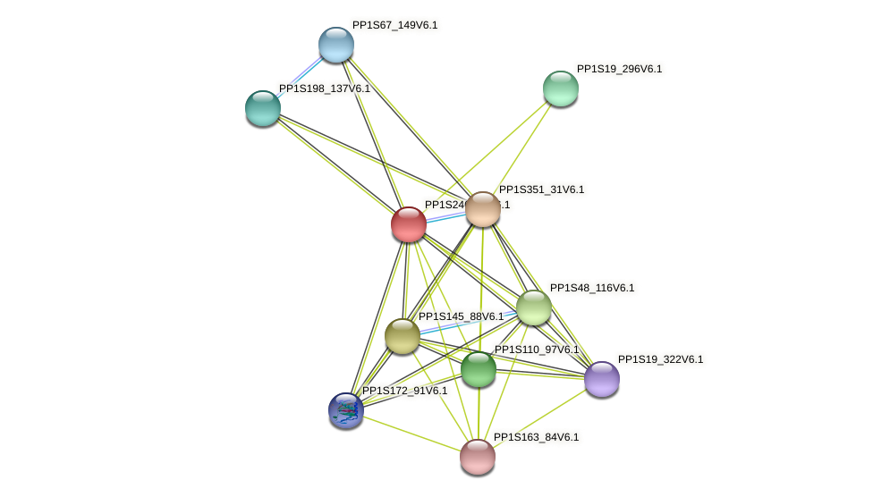 PP1S246_43V6.1 protein (Physcomitrella patens) - STRING interaction network