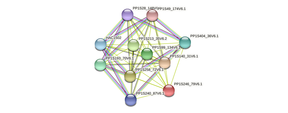 PP1S246_79V6.1 protein (Physcomitrella patens) - STRING interaction network
