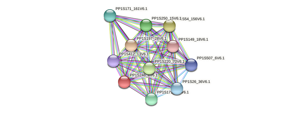 PP1S246_8V6.1 protein (Physcomitrella patens) - STRING interaction network