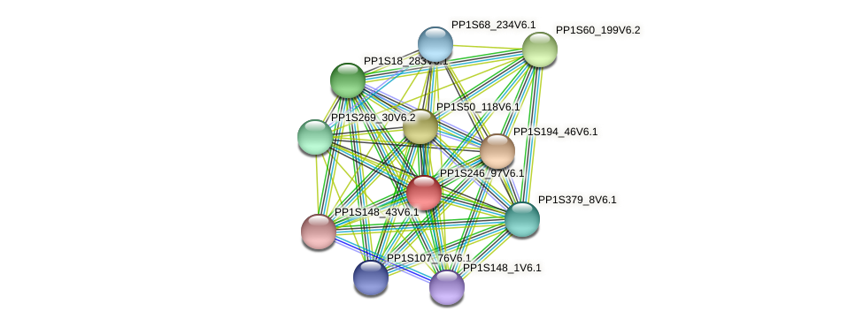 PP1S246_97V6.1 protein (Physcomitrella patens) - STRING interaction network