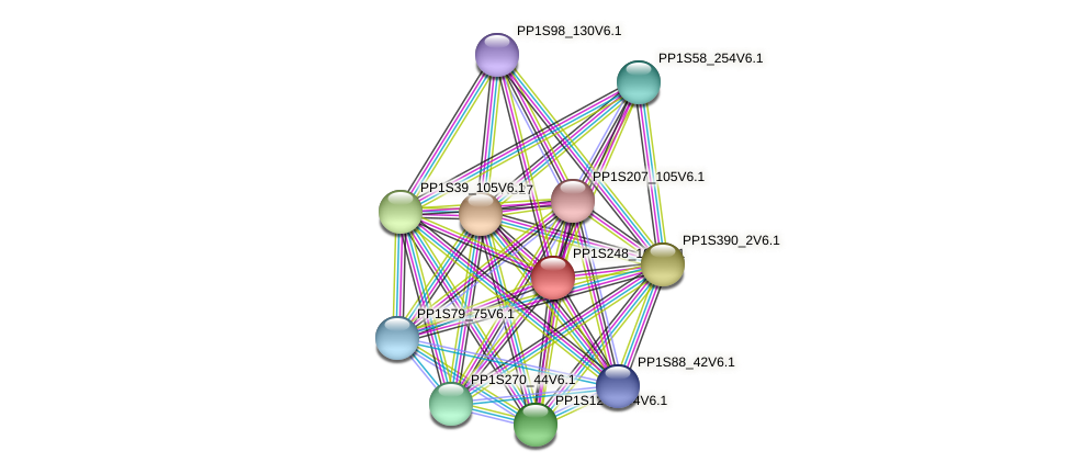 PP1S248_102V6.1 protein (Physcomitrella patens) - STRING interaction network