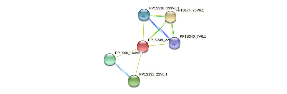 PP1S249_22V6.1 protein (Physcomitrella patens) - STRING interaction network