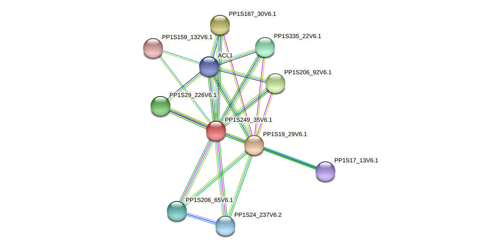 PP1S249_35V6.1 protein (Physcomitrella patens) - STRING interaction network