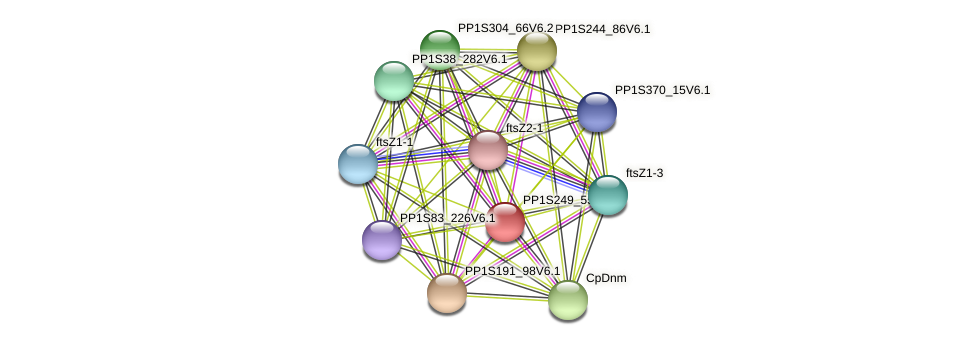 PP1S249_55V6.1 protein (Physcomitrella patens) - STRING interaction network