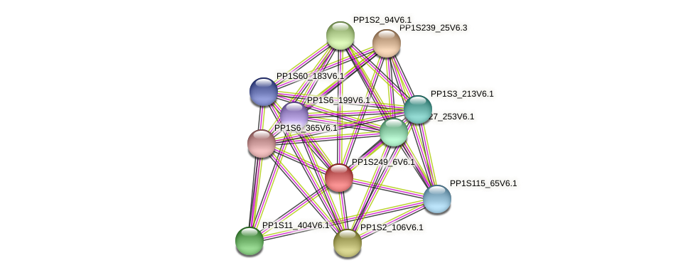 PP1S249_6V6.1 protein (Physcomitrella patens) - STRING interaction network