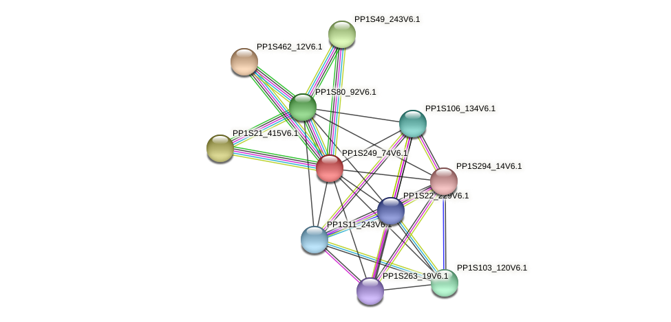 PP1S249_74V6.1 protein (Physcomitrella patens) - STRING interaction network