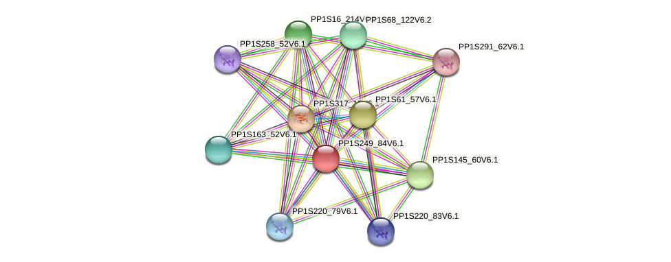 PP1S249_84V6.1 protein (Physcomitrella patens) - STRING interaction network