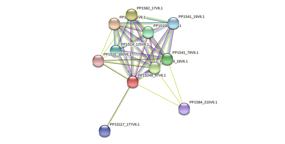 PP1S249_97V6.1 protein (Physcomitrella patens) - STRING interaction network