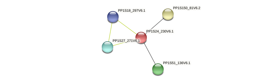 PP1S24_230V6.1 protein (Physcomitrella patens) - STRING interaction network