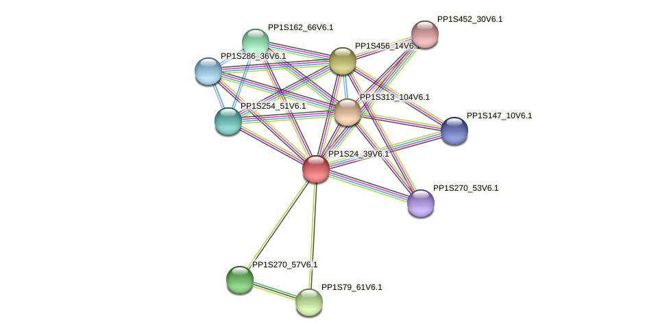 PP1S24_39V6.1 protein (Physcomitrella patens) - STRING interaction network