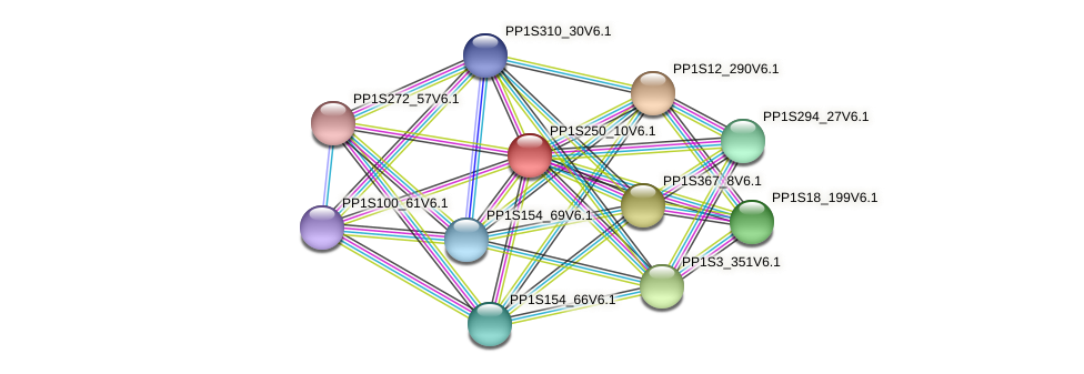 PP1S250_10V6.1 protein (Physcomitrella patens) - STRING interaction network