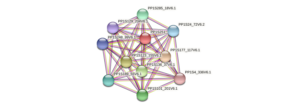PP1S251_18V6.2 protein (Physcomitrella patens) - STRING interaction network
