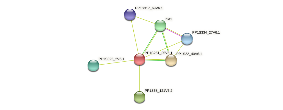 PP1S251_25V6.1 protein (Physcomitrella patens) - STRING interaction network