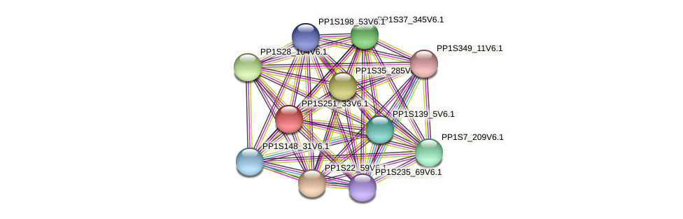 PP1S251_33V6.1 protein (Physcomitrella patens) - STRING interaction network