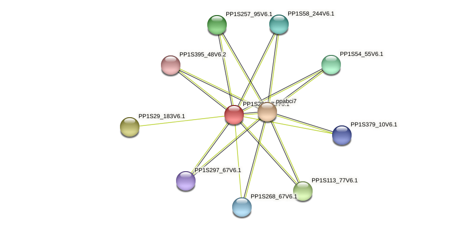 PP1S251_73V6.1 protein (Physcomitrella patens) - STRING interaction network