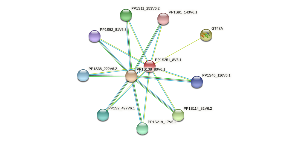 PP1S251_8V6.1 protein (Physcomitrella patens) - STRING interaction network