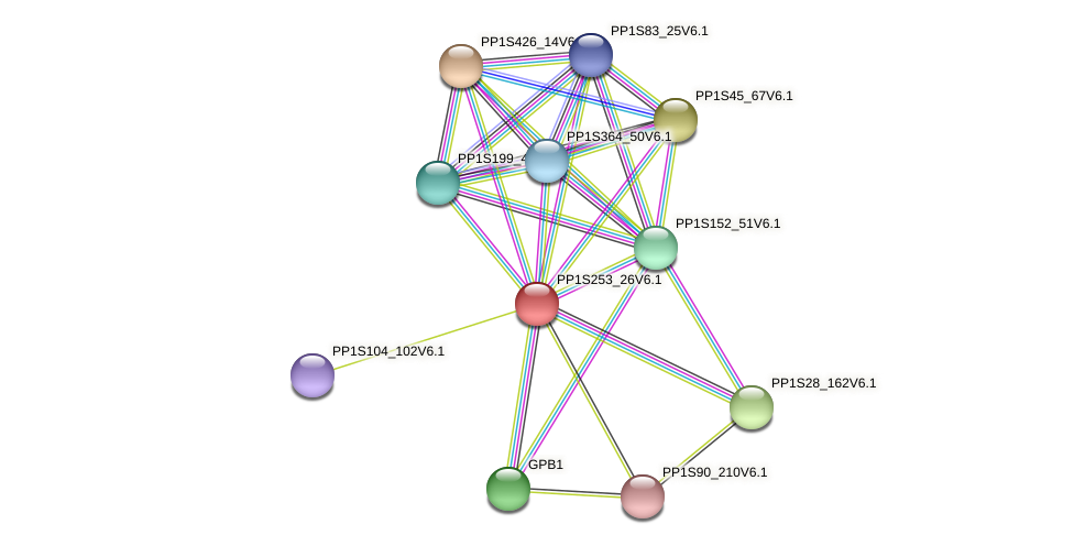 PP1S253_26V6.1 protein (Physcomitrella patens) - STRING interaction network