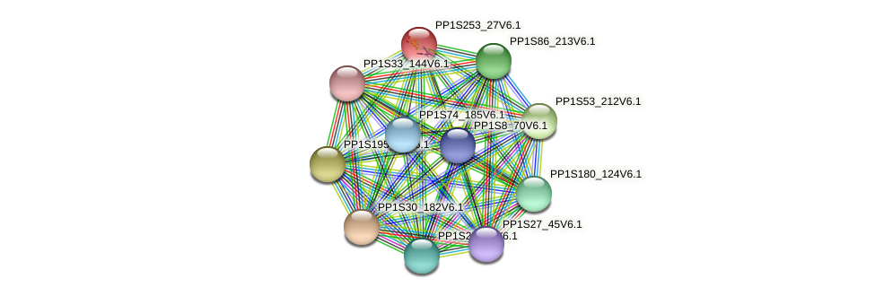 PP1S253_27V6.1 protein (Physcomitrella patens) - STRING interaction network