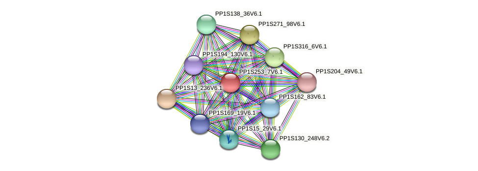 PP1S253_7V6.1 protein (Physcomitrella patens) - STRING interaction network