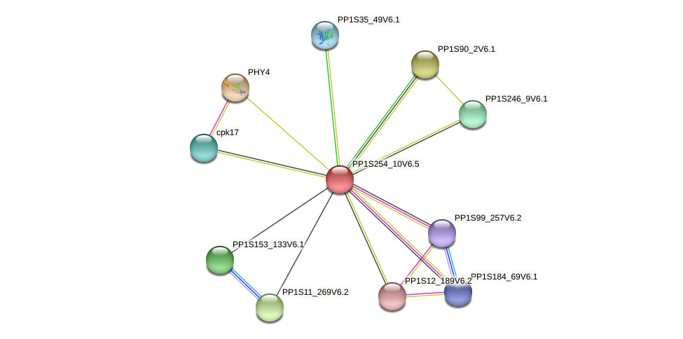 PP1S254_10V6.2 protein (Physcomitrella patens) - STRING interaction network