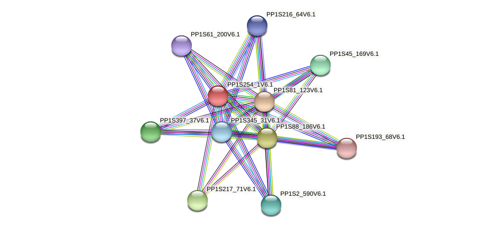 PP1S254_1V6.1 protein (Physcomitrella patens) - STRING interaction network