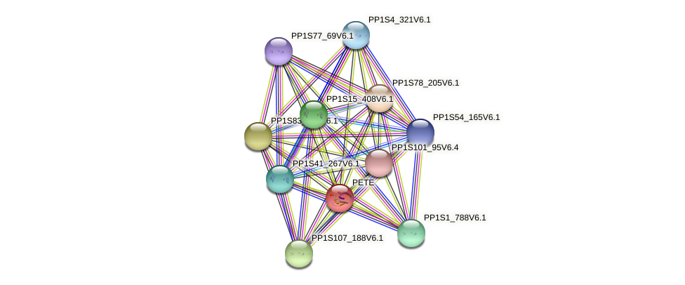 PETE protein (Physcomitrella patens) - STRING interaction network