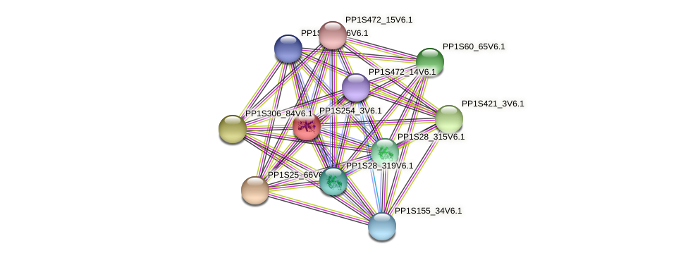 PP1S254_3V6.1 protein (Physcomitrella patens) - STRING interaction network